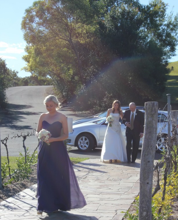 Wedding at the Arbour, Sirromet Winery with Brisbane Wedding Celebrant Ciara Hodge.
